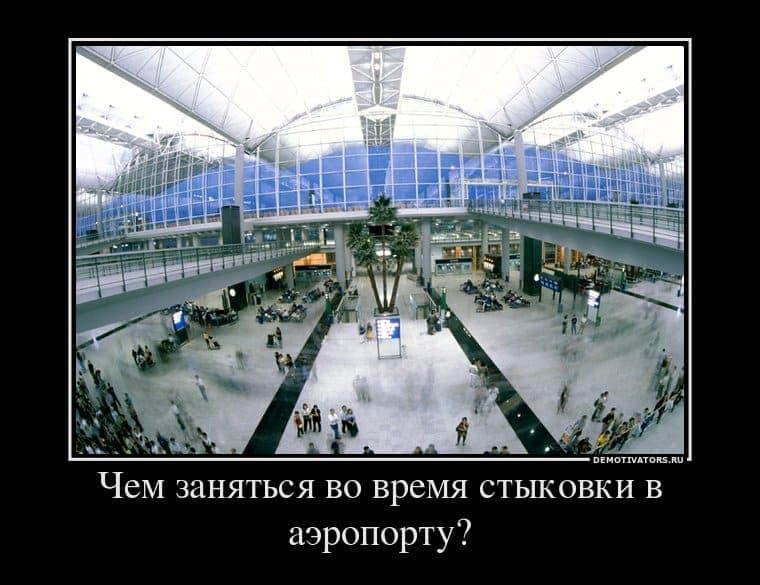 409211 chem zanyatsya vo vremya styikovki v aeroportu demotivators ru
