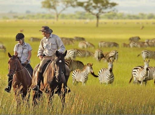 Отдых и сафари в Танзании