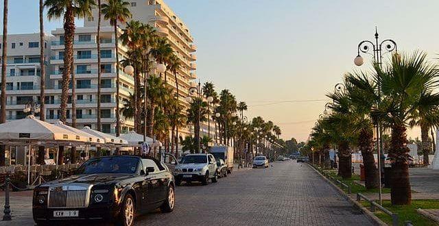 640px palm trees promenade